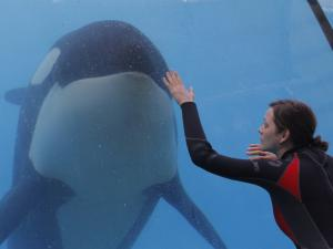 RUST AND BONE: REVIEW