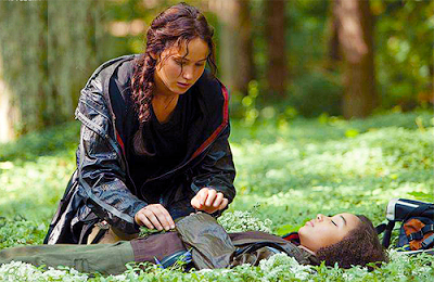 NEW HUNGER GAMES ATTRACTION HAS SAFETY ISSUES