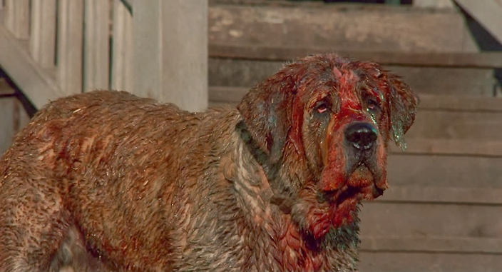 STANLEY KUBRICK REALLY WANTED TO MAKE CUJO