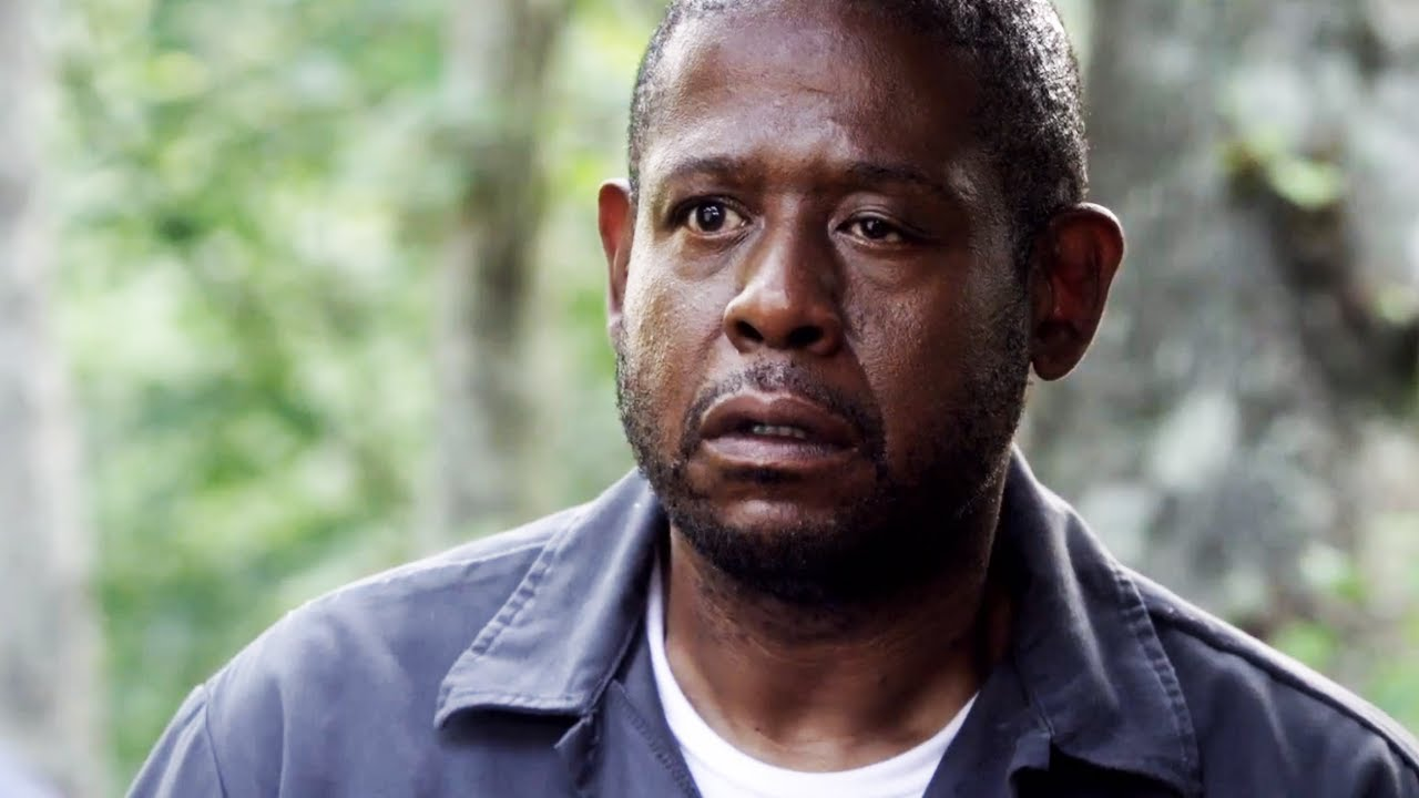 FOREST WHITAKER NOT AN ACTUAL FOREST, IT IS CONFIRMED