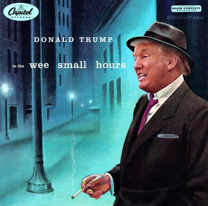 DONALD TRUMP RELEASES ALBUM
