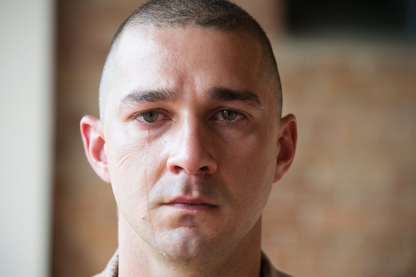 The Studio Exec SHIA LABEOUF DOESN'T GET ARRESTED – The ... Shia Labeouf
