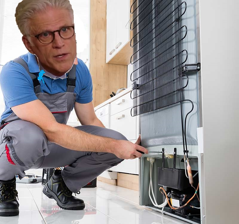 TED DANSON FIXES FRIDGES IS GO