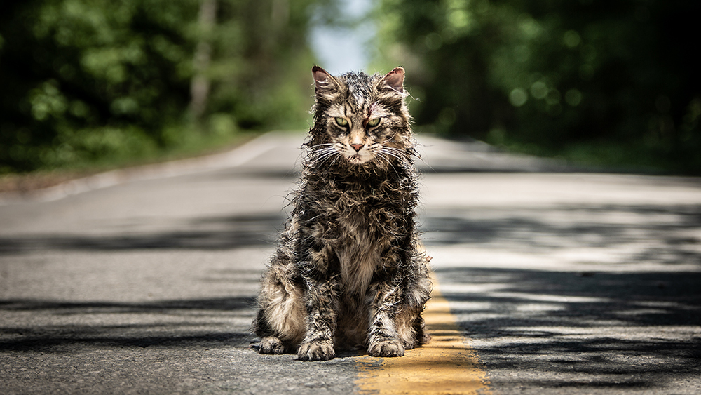 PET SEMATARY CRITICIZED FOR SHOCKING SPELLING